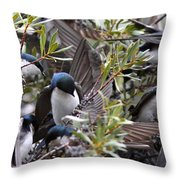 Grey Feathers - Tree Swallow Throw Pillow