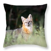 Grey Fox - The Man Throw Pillow
