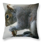 Grey Squirrel Dining Out Throw Pillow
