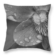Grey Violet Throw Pillow
