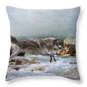 Grey Wolf Jumping Over A Mountain Stream Throw Pillow