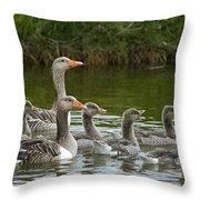Greylag Goose Anser Anser Couple Throw Pillow