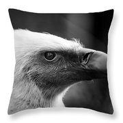 Griffon Vulture Throw Pillow