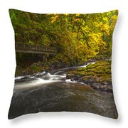 Grist Mill Creek Throw Pillow