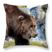 Griz Throw Pillow