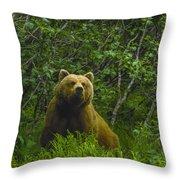 Grizzly Bear Alaska Throw Pillow