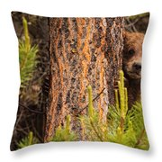 Grizzly Bear Cub Up A Tree, Yukon Throw Pillow