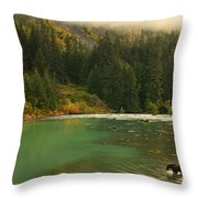 Grizzly Bear Fishing In Chilkoot River Throw Pillow