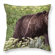 Grizzly Bear In Yellowstone Neg.28 Throw Pillow