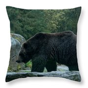 Grizzly Bear Or Brown Bear Throw Pillow