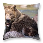 Grizzly Cavorts In Stream Throw Pillow