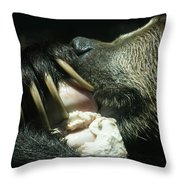 Grizzly Eating Throw Pillow
