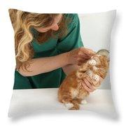 Grooming A Kitten Throw Pillow