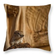 Ground Squirrel At Monument Valley Throw Pillow