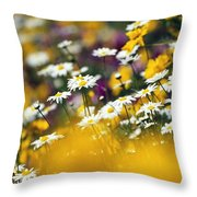 Group Of Daisies Throw Pillow