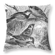 Group Of Sparrows Throw Pillow