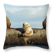 Group Of Three Throw Pillow