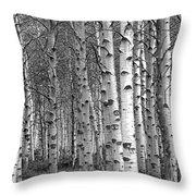 Grove Of Birch Trees Throw Pillow