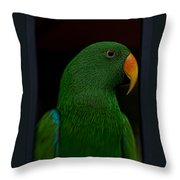 Guacamole Throw Pillow