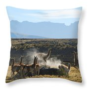 Guanacos In Action Throw Pillow by Camilla Brattemark