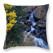 Guanella Falls Throw Pillow