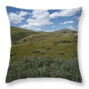 Guanella Pass Slopes Throw Pillow by Michael Kirsh