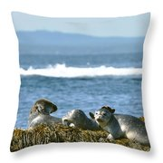 Guardians Of Agementicus Throw Pillow