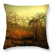 Guide Our Path Throw Pillow