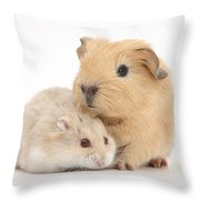 Guinea Pig And Hamster Throw Pillow