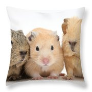 Guinea Pigs And Hamster Throw Pillow