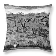 Gulf Coast, C1720 Throw Pillow