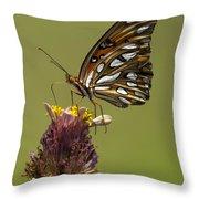 Gulf Fritillary Butterfly - Agraulis Vanillae Throw Pillow