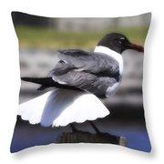 Gull Dance Throw Pillow