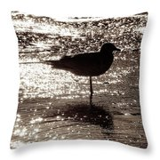 Gull In Silver Tidal Pool Throw Pillow