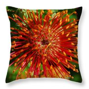 Gum Flower Throw Pillow