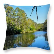 Gums Along The River Throw Pillow