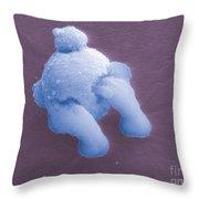 Gunshot Residue Throw Pillow