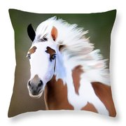 Gypsy Vanner Throw Pillow