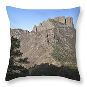 Habitat Transition Throw Pillow