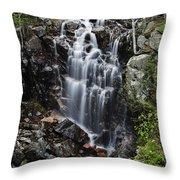 Hadlock Falls Acadia Throw Pillow