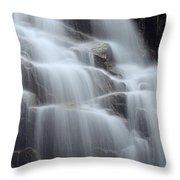 Hadlock Falls II Throw Pillow