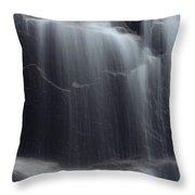 Hadlock Falls Throw Pillow