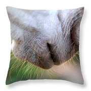 Hair Of The Chinny Chin Chin Throw Pillow