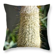 Hairy Cactus Throw Pillow