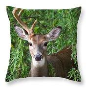 Half A Buck Throw Pillow