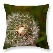 Half A Dandelion Throw Pillow