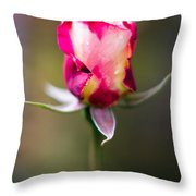 Half-a-rose Throw Pillow