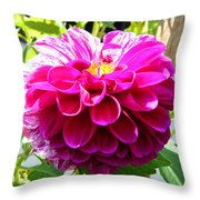Half And Half Flower Throw Pillow