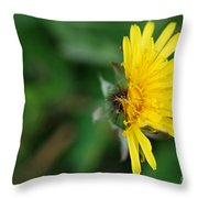 Half Cooked Throw Pillow
