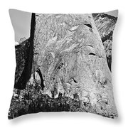 Half Dome Black And White Throw Pillow